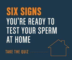 best of Count hours Sperm ejaculation 24 after