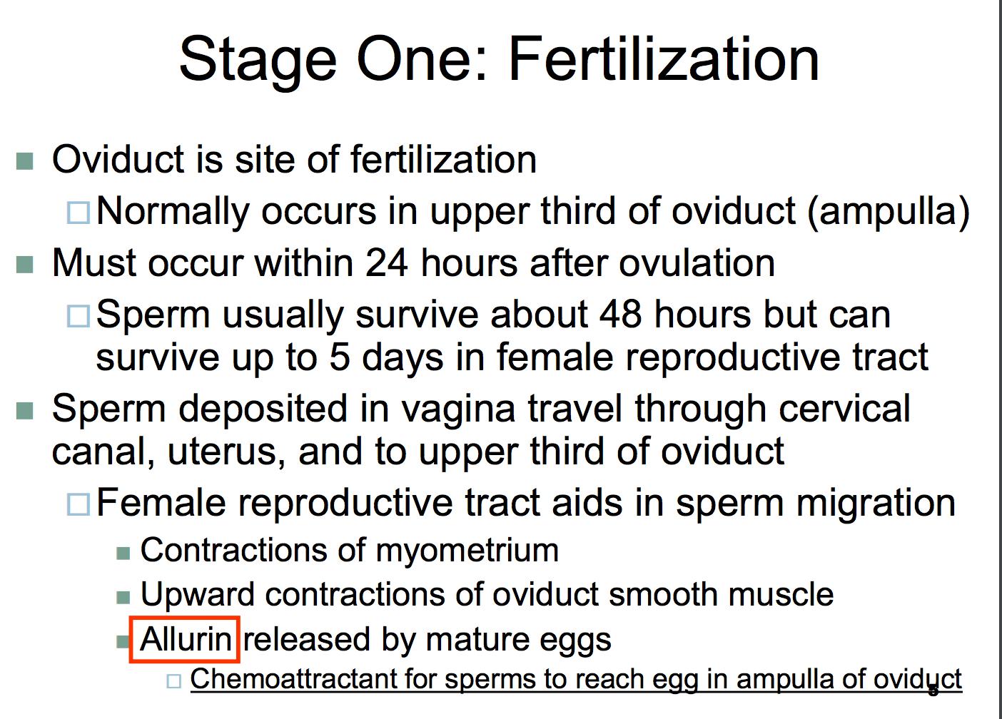 Sperm count 24 hours after ejaculation