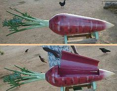 French F. reccomend Funny strange coffins