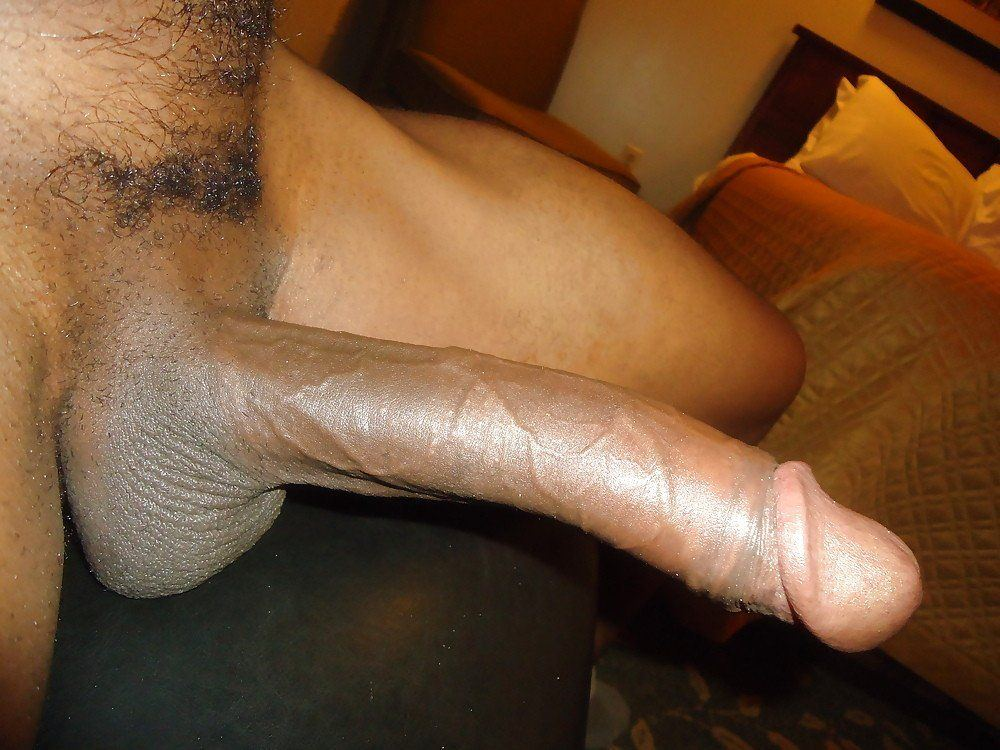 New N. reccomend Amateurs like black dick