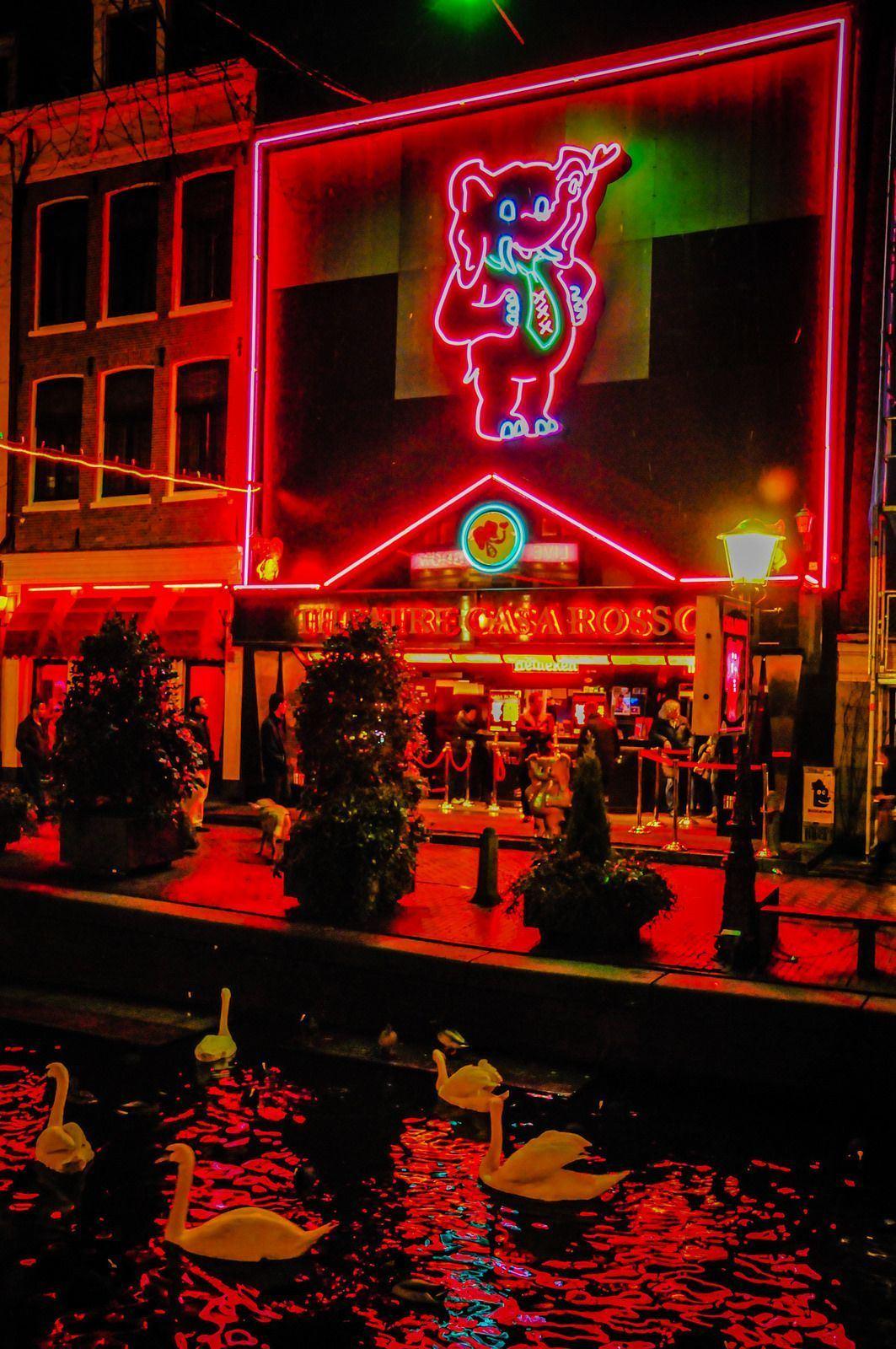 Bazooka reccomend Amsterdam live adult shows