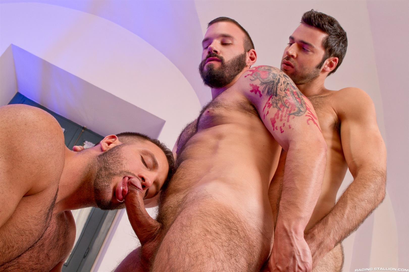 Muscle homo three some with facial