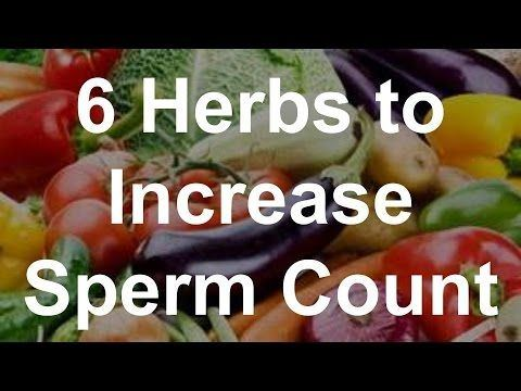 Agent 9. reccomend Herbal remedies for increasing sperm count