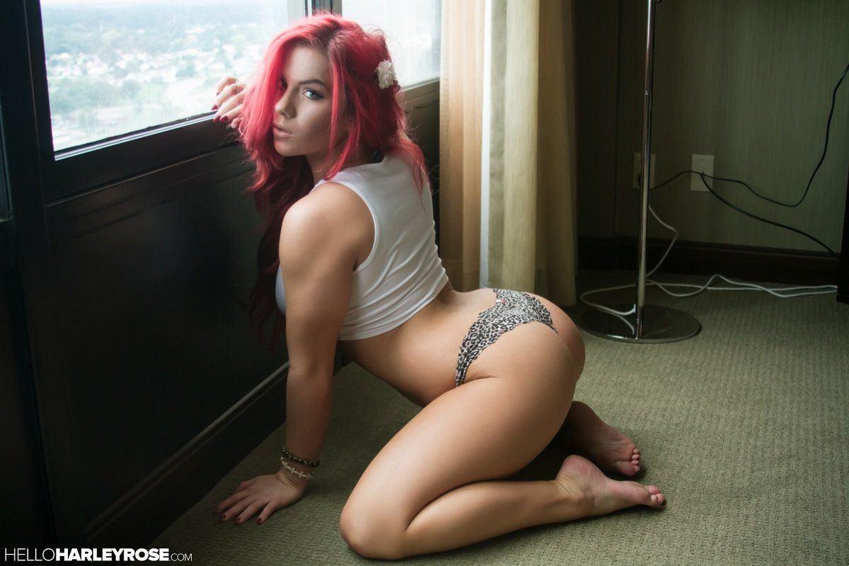 harleys-and-hot-chicks-porn