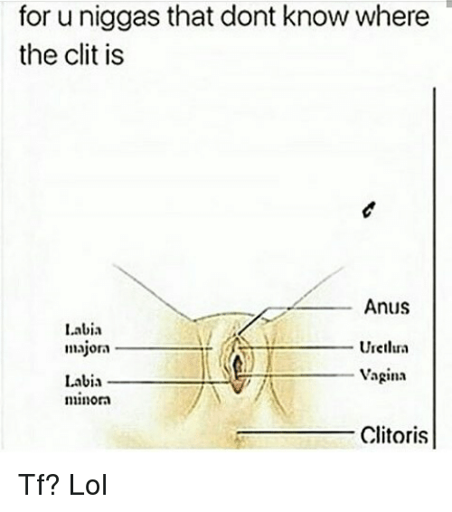 best of Clit This is